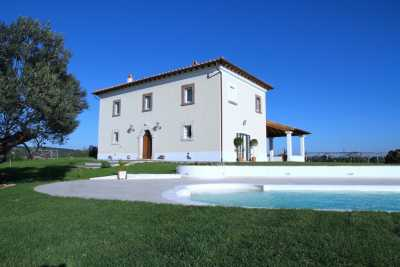 Villa vacations rentals with pool near Canino Viterbo, beautiful private park with olive trees with stunning view. 3 bedrooms, 3 bathrooms up to 6 sle